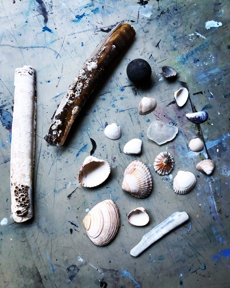 The Travelling Bookbinder film shoot. Beach finds, shell collection