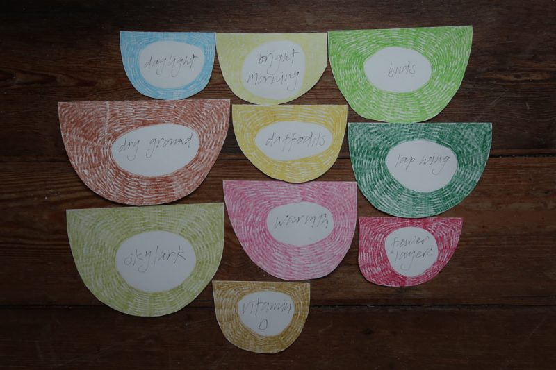 The Travelling Bookbinder: StAnza Bookart: Shades of Spring. Write your original words on the reverse, and add colour